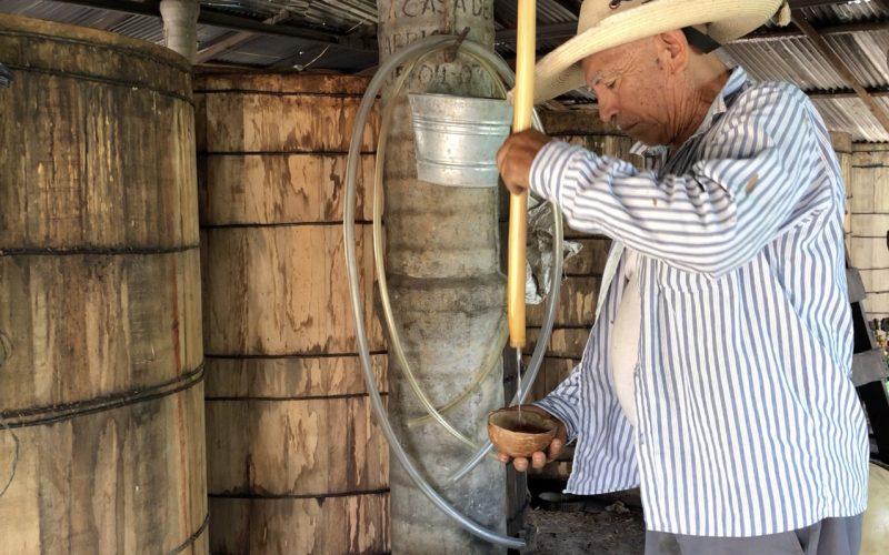 Mochitlán, Guerrero, viernes 3 de julio de 2020. El maestro mezcalero Rogaciano Vásquez en la fábrica de la cooperativa Tepolzito de Mochitlán. Foto: Lenin Ocampo Torres